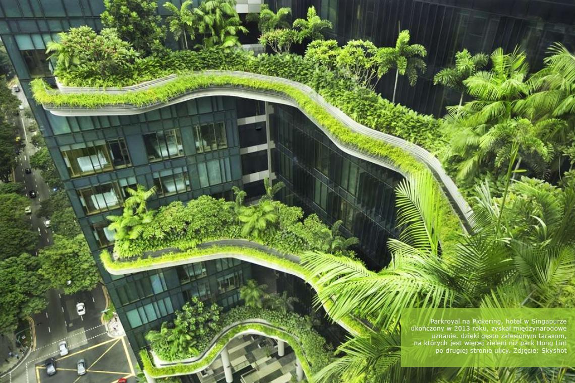 Ekologiczny projekt