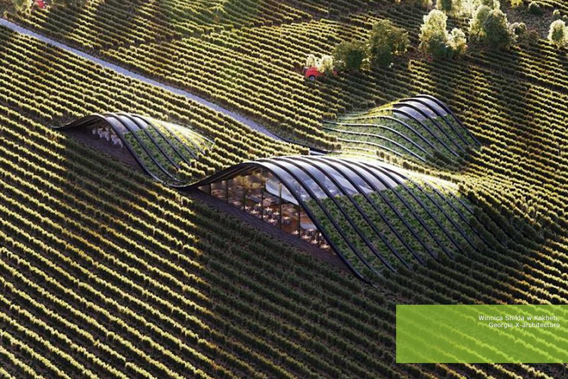 Przykłady zielonej architektury