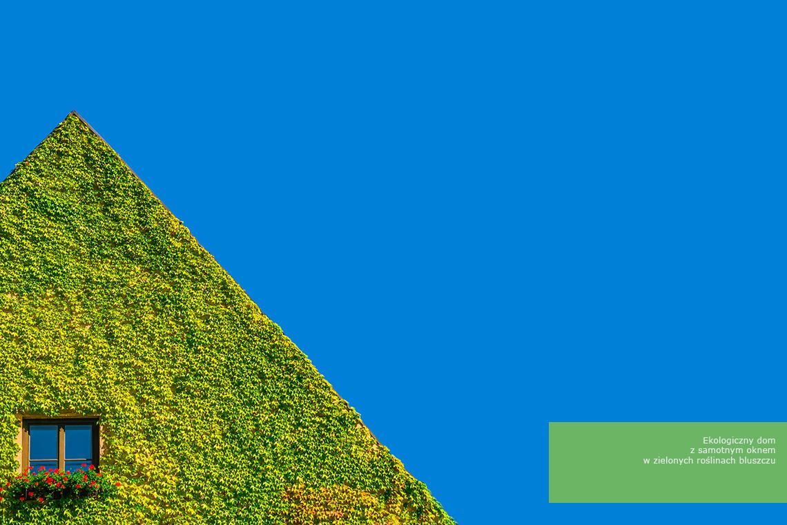 Architektura w zieleni